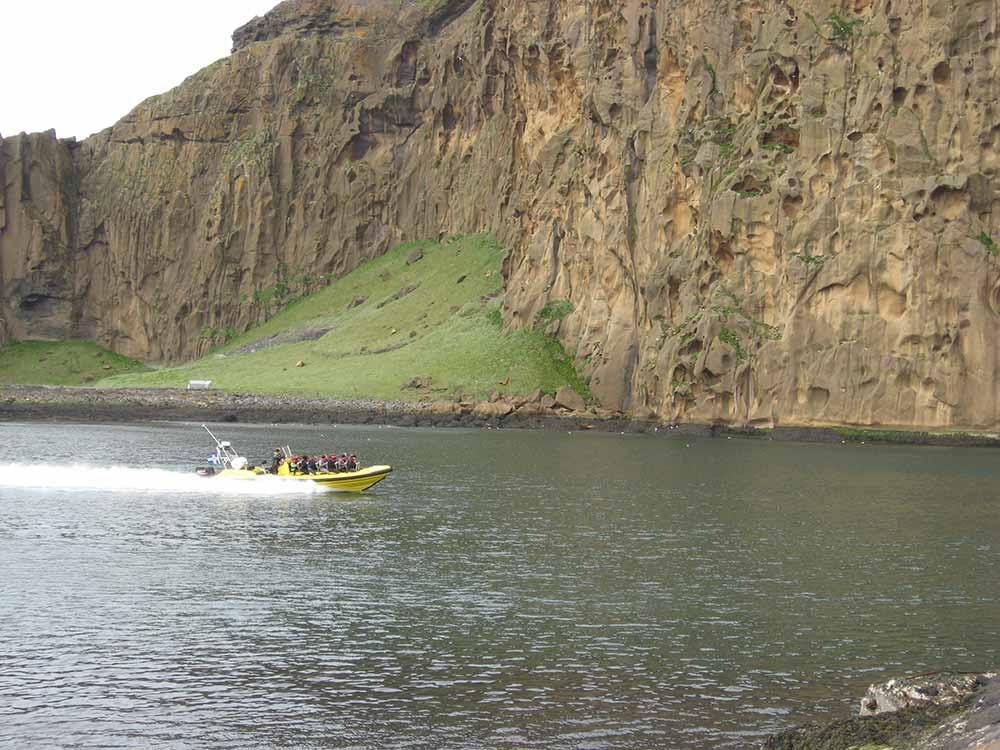 Rib safari boat tour in Westman Islands